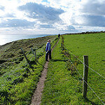 Ballycotton Cliff Walk with dogs