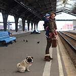 dog waiting for a train