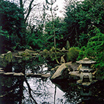 the japanese garden in sir thomas and lady dixon park, a great place to walk your dog in belfast