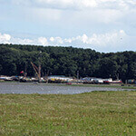 pin mill, a great place to walk your dog in suffolk.
