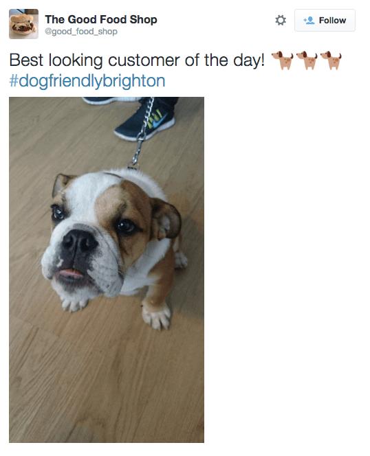 the good food shop, a dog friendly restaurant in brighton
