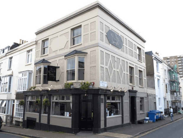 the ginger dog, a dog friendly pub in brighton