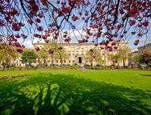 blythswood square, a dog friendly place to stay in glasgow
