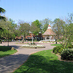 chapelfield gardens, a great place to walk your dog in norwich