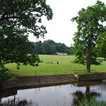 earlham park, a great place to walk your dog in norwich