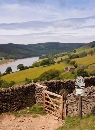 Farm Stay, dog friendly B&Bs in the Peak District