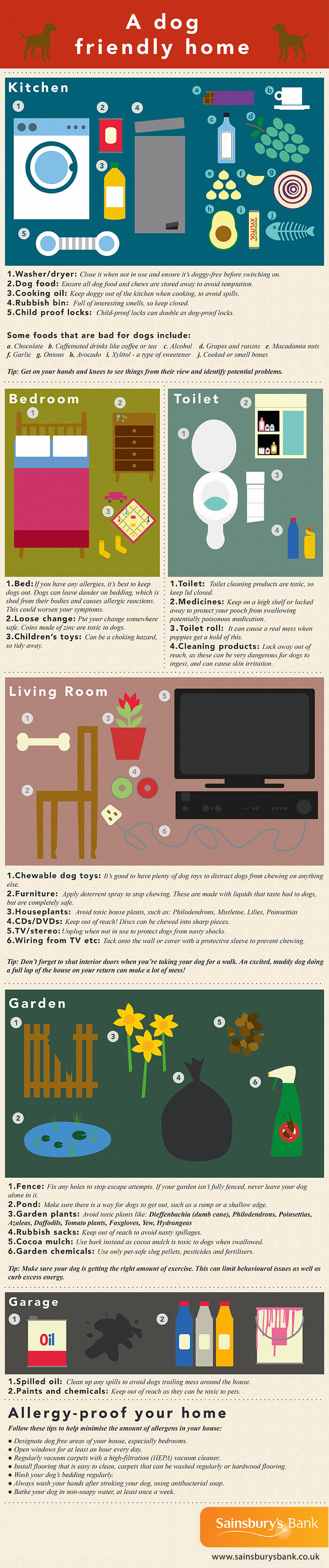 Image infographic explaining how to make numerous sections of your home dog friendly